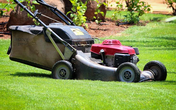 Lawn mowing and grass cutting