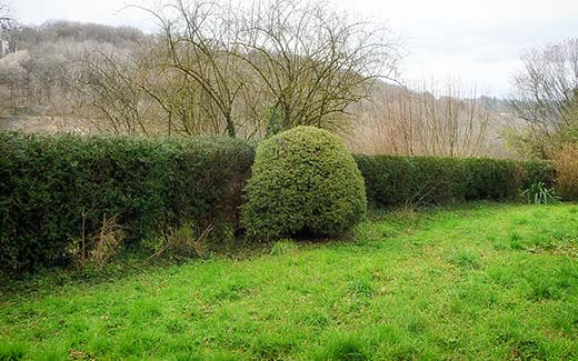 A long hedge after cutting